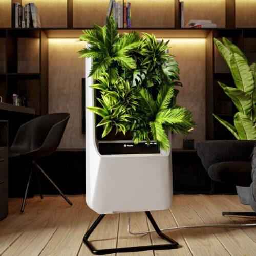 Planting Power uit Almelo lanceert innovatief product in gezondheidsindustrie